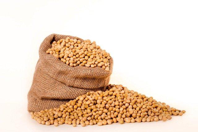 dieta wegetariańska ketogeniczna soja