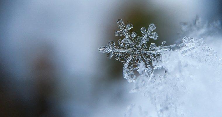 Zimna Termogeneza – Wszystko Co Musisz Wiedzień