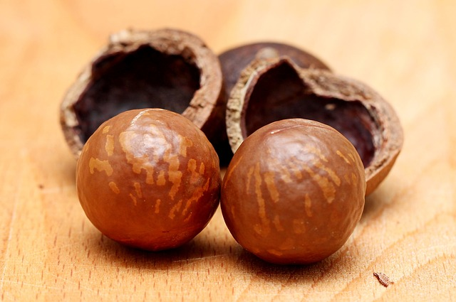 jakie orzechy w diecie ketogenicznej_orzechy macadamia