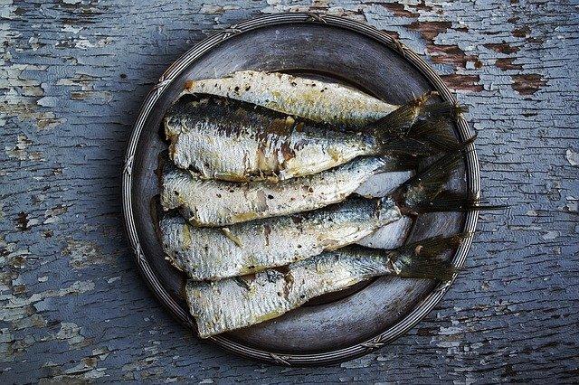 wpływ kwasów omega-3 na mózg